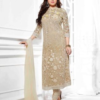Party Wear Beige Color Net Embroidered Straight Cut Salwar Suit