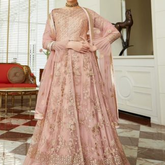 Beautiful Pastal Color Net Embroidered Designer Semi Stitched Gown